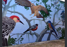 This outdoor 24' x 42' mural can be seen in Riverside Park, Vero Beach FL. It was a group volunteer project of the Art Club, but Carol Makris designed it and painted all the birds.